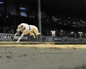 Ballymac Marine, wins Romford Puppy Cup on Sky TV